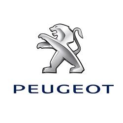 Peugeot - GRUBYGARAGE - Sklep Tuningowy